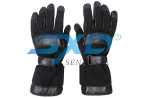E-glove (C1)